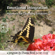 Emotional Integration MP3